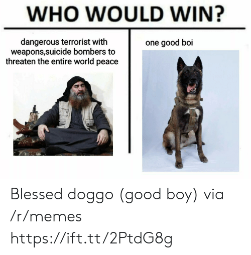 Who Would Win: WHO WOULD WIN?  dangerous terrorist with  weapons,suicide bombers to  threaten the entire world peace  one good boi Blessed doggo (good boy) via /r/memes https://ift.tt/2PtdG8g