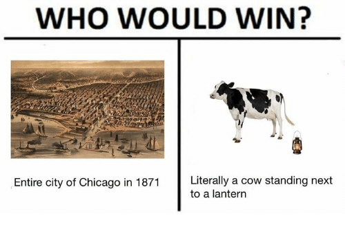 cowed: WHO WOULD WIN?  Entire city of Chicago in 1871 Literally a cow standing next  to a lantern
