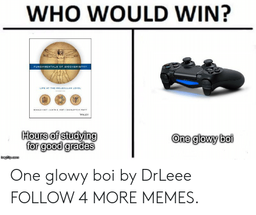 wiley: WHO WOULD WIN?  FUNDAMENTALS OF BIOCHEMISTRY  LIFE AT THE MOLECULAR LEVEL  DONALD VOETY JUDITH G VOET OARLOTTE w. PRATT  WILEY  Hours of studying  for good grades  One glowy boi  imgilp.com One glowy boi by DrLeee FOLLOW 4 MORE MEMES.