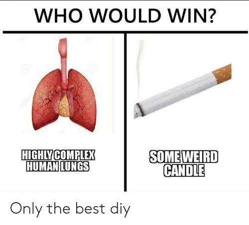 Complex, Weird, and Best: WHO WOULD WIN?  HIGHLY COMPLEX  HUMAN LUNGS  SOME WEIRD  CANDLE Only the best diy