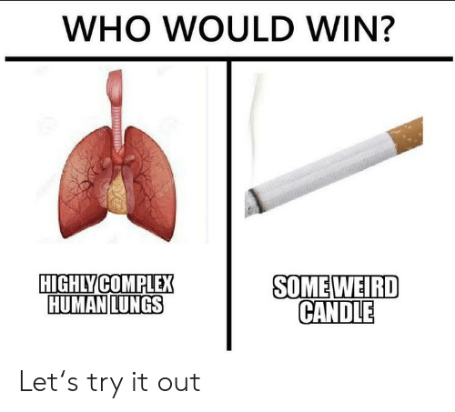 Complex, Reddit, and Human: WHO WOULD WIN?  HIGHLY COMPLEX  HUMAN LUNGS  SOMEWEIRD  CANDLE Let's try it out