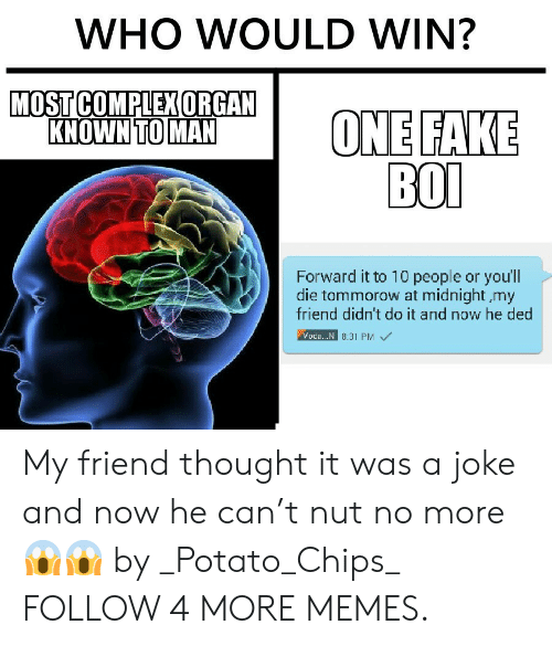 potato chips: WHO WOULD WIN?  MOST COMPLEX ORGAN  KNOWN TO MAN  ONE FAKE  ВOО  Forward it to 10 people or youll  die tommorow at midnight my  friend didn't do it and now he ded  Voda.. N 8.31 PM My friend thought it was a joke and now he can't nut no more 😱😱 by _Potato_Chips_ FOLLOW 4 MORE MEMES.