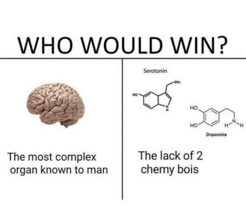 Complex, Who, and Dopamine: WHO WOULD WIN?  Serotonin  NH2  HO  но  HO  Dopamine  The lack of 2  The most complex  organ known to man  chemy bois