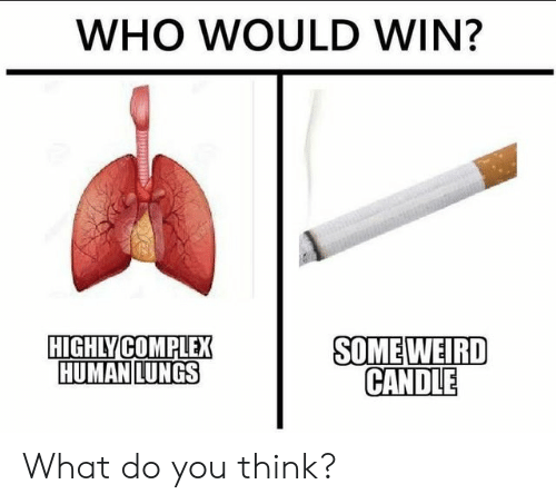 Complex, Weird, and Dank Memes: WHO WOULD WIN?  SOME WEIRD  CANDLE  HIGHLY COMPLEX  HUMAN LUNGS What do you think?
