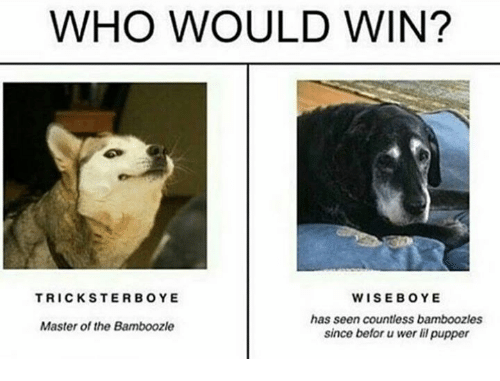 Seens: WHO WOULD WIN?  WISEBOYE  has seen countless bamboozles  since befor wer li pupper  TRICKSTERBOYE  Master of the Bamboozle