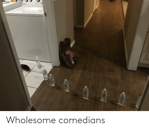 Wholesome: Wholesome comedians