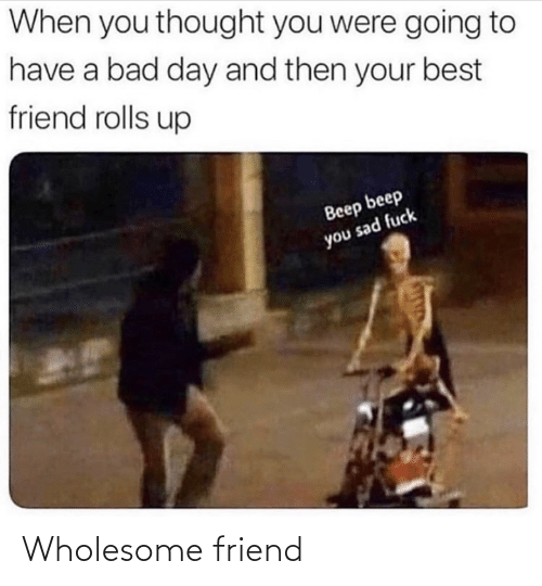 Wholesome: Wholesome friend