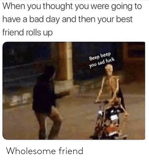 Wholesome and Friend: Wholesome friend