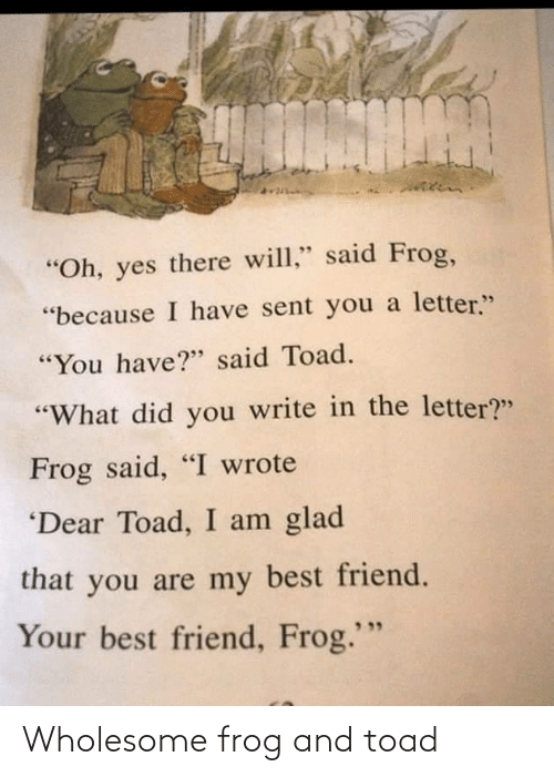 frog: Wholesome frog and toad
