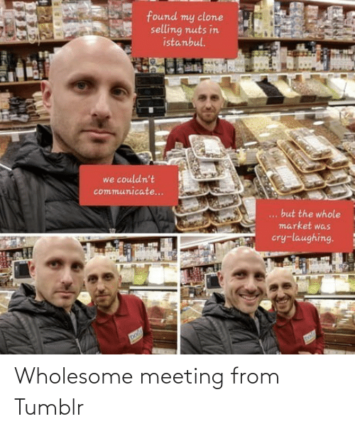 Wholesome: Wholesome meeting from Tumblr