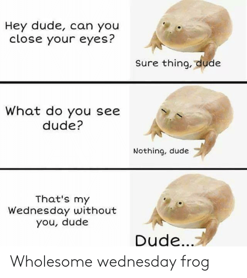 Wednesday, Wholesome, and Frog: Wholesome wednesday frog