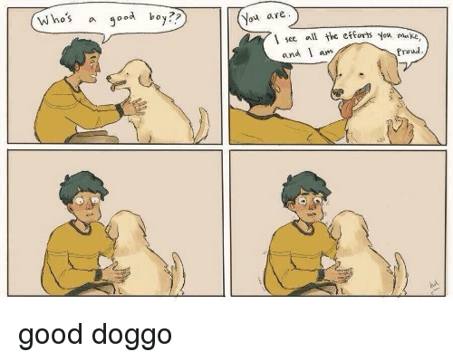Good, Proud, and Boy: Who's a good boy.  You are  see. a  ll the etforts You make  and am  Proud good doggo