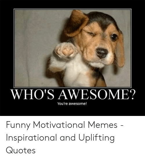Motivational Memes: WHO'S AWESOME?  You're awesome! Funny Motivational Memes - Inspirational and Uplifting Quotes
