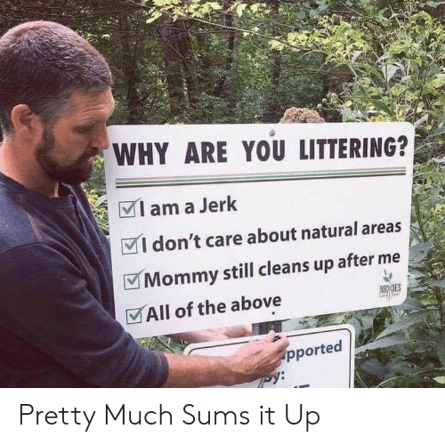 All of The, Why, and All: WHY ARE YOU LITTERING?  am a Jerk  I don't care about natural areas  Mommy still cleans up after  All of the above  NICHES  pported  py: Pretty Much Sums it Up