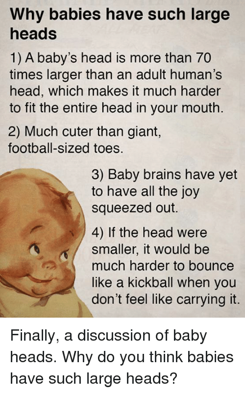 Brains, Finals, and Head: Why babies have such large  heads  1) A baby's head is more than 70  times larger than an adult human's  head, which makes it much harder  to fit the entire head in your mouth.  2) Much cuter than giant,  football-sized toes.  3) Baby brains have yet  to have all the joy  squeezed out.  4) If the head were  smaller, it would be  much harder to bounce  like a kickball when you  don't feel like carrying it. Finally, a discussion of baby heads.  Why do you think babies have such large heads?
