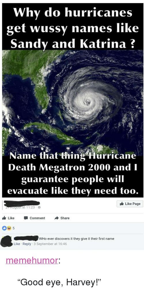 "Tumblr, Blog, and Death: Why do hurricanes  get wussy names like  Sandy and Katrina?  Name that thing Hurricane  Death Megatron 2000 and  guarantee people will  evacuate like they need too  1台Like Page  r August at 11:23  Like CommentShare  WHo ever discovers it they give it their first name  Like Reply 3 September at 16:46 <p><a href=""http://memehumor.net/post/165002964703/good-eye-harvey"" class=""tumblr_blog"">memehumor</a>:</p>  <blockquote><p>""Good eye, Harvey!""</p></blockquote>"