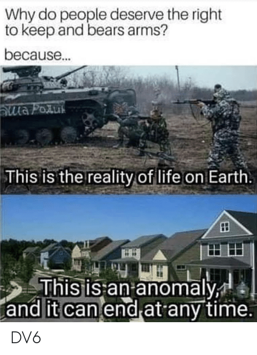 Life, Memes, and Bears: Why do people deserve the right  to keep and bears arms?  because.  This is the reality of life on Earth  his is an anomaly  and it can end at any time. DV6