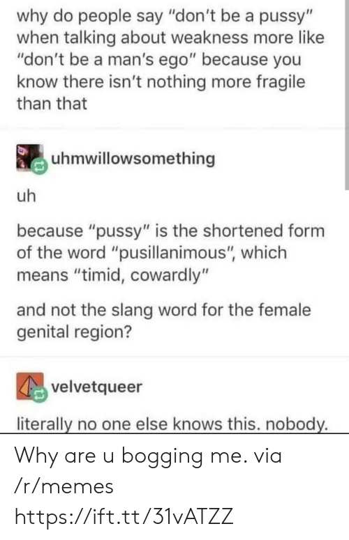 """A Pussy: why do people say """"don't be a pussy""""  when talking about weakness more like  """"don't be a man's ego"""" because you  know there isn't nothing more fragile  than that  uhmwillowsomething  uh  because """"pussy"""" is the shortened form  the word """"pusillanimous"""", which  means """"timid, cowardly""""  and not the slang word for the female  genital region?  velvetqueer  literally no one else knows this. nobody. Why are u bogging me. via /r/memes https://ift.tt/31vATZZ"""