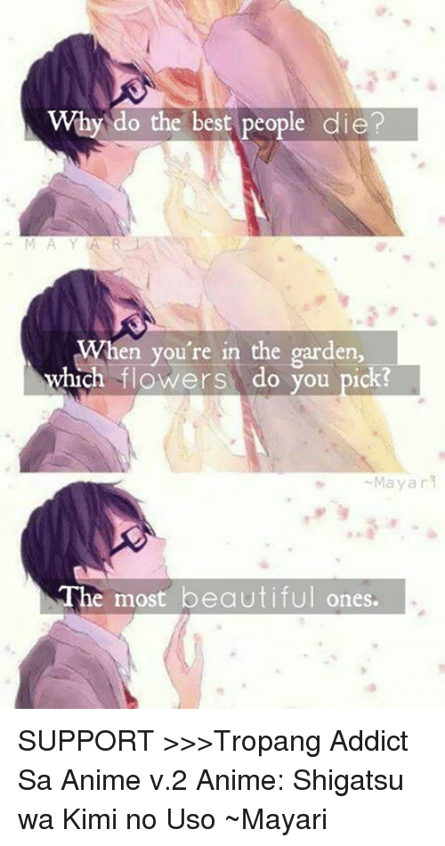 Animals, Anime, and Beautiful: Why do the best people die?  When you're in the garden,  which flowers do you pick?  Mayar  The most beautiful ones. SUPPORT >>>Tropang Addict Sa Anime v.2  Anime: Shigatsu wa Kimi no Uso ~Mayari シドニー