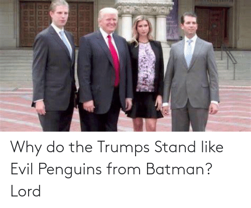 Batman: Why do the Trumps Stand like Evil Penguins from Batman? Lord