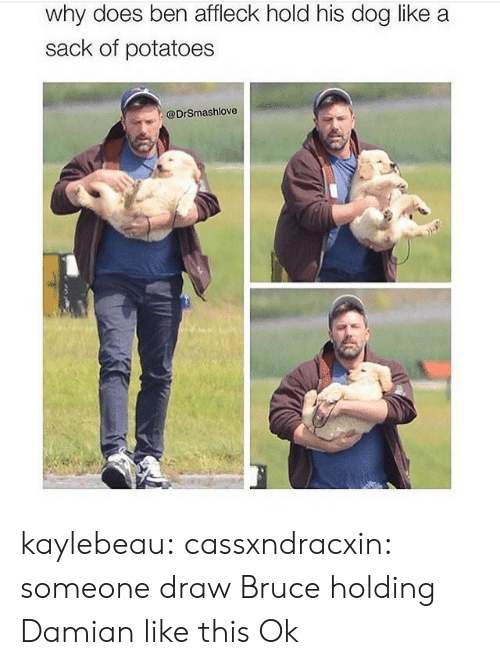 Target, Tumblr, and Ben Affleck: why does ben affleck hold his dog like a  sack of potatoes  @DrSmashlove kaylebeau:  cassxndracxin:  someone draw Bruce holding Damian like this   Ok