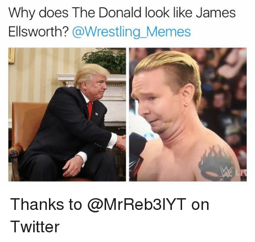 The Donald: Why does The Donald look like James  Ellsworth?  @Wrestling Memes Thanks to @MrReb3lYT on Twitter
