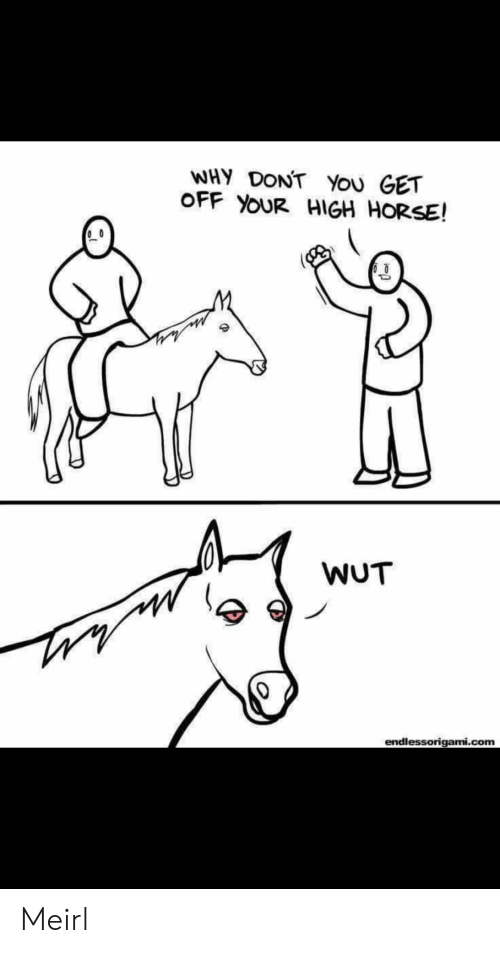 high horse: WHY DONT You GET  OFF YOUR HIGH HORSE!  WUT  endlessorigami.com Meirl