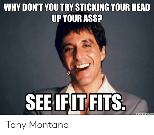 Tony Meme: WHY DON'T YOU TRY STICKING YOUR HEAD  UP YOUR ASS  SEEIFIT FITS  memecrunch.coI Tony Montana