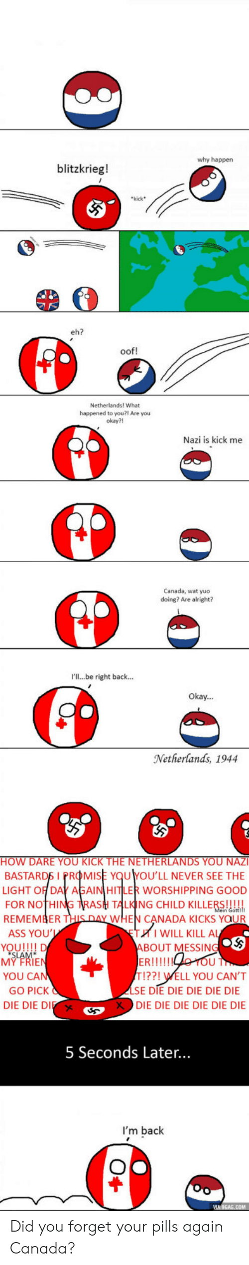 Ass, Wat, and Canada: why happen  blitzkrieg!  kick  eh?  oof!  Netherlands! What  happened to you?! Are you  okay?!  Nazi is kick me  Canada, wat yuo  doing? Are alright?  I'll...be right back...  Okay...  Netherlands, 1944  BASTARD dMISE  LIGHT OFT GAIN  FOR NOTHI  REMEMBERT  ASS YOU  OU'LL NEVER SEE THE  R WORSHIPPING GOOD  TAI ING CHILD KILLERS!  WHEN CANADA KICKS YaUR  WILL KILL A  BOUT MESSINC  MY FRIE  YOU CA  GO PICK  DIE DIE DIE  T!??! WELL YOU CAN'T  SE DIE DIE DIE DIE DIE  DIE DIE DIE DIE DIE DIE  Xs  5 Seconds Later...  I'm back Did you forget your pills again Canada?