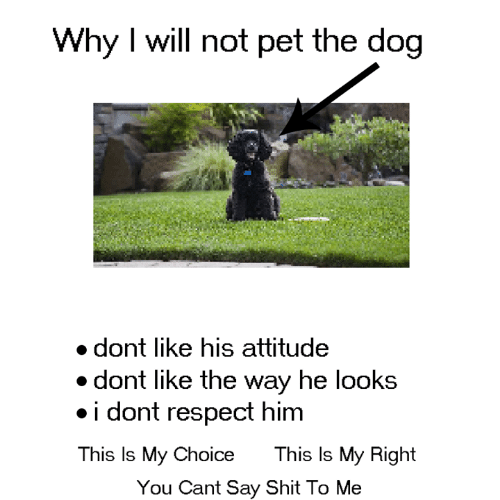 hel: Why I will not pet the dog  dont like his attitude  dont like the way hel  ooks  .i dont respect himm  This Is My Choice  This ls My Right  You Cant Say Shit To Me