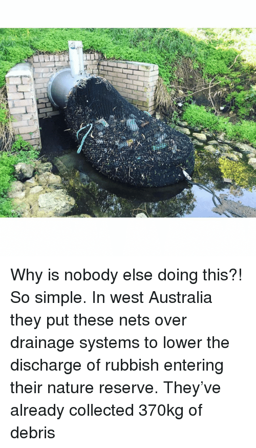 Memes, Australia, and Nature: Why is nobody else doing this?! So simple. In west Australia they put these nets over drainage systems to lower the discharge of rubbish entering their nature reserve. They've already collected 370kg of debris