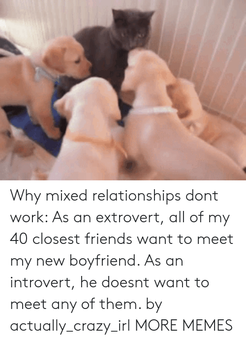 Crazy, Dank, and Friends: Why mixed relationships dont work: As an extrovert, all of my 40 closest friends want to meet my new boyfriend. As an introvert, he doesnt want to meet any of them. by actually_crazy_irl MORE MEMES