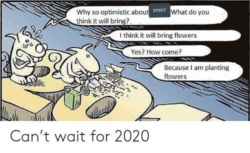 Flowers: Why so optimistic about 202c7What do you  think it will bring?  I think it will bring flowers  Yes? How come?  Because I am planting  flowers Can't wait for 2020