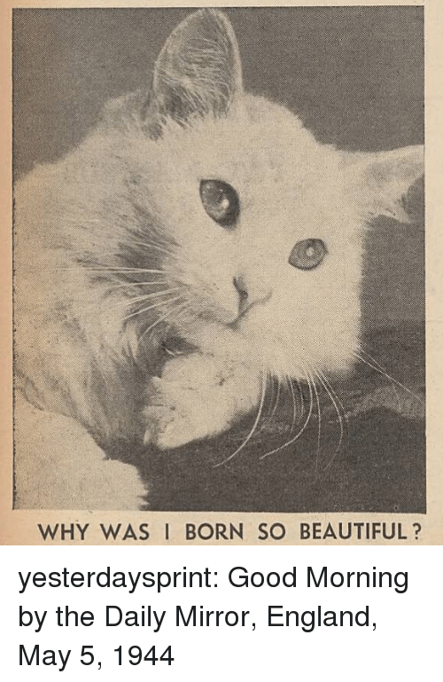 Beautiful, England, and Tumblr: WHY WAS I BORN SO BEAUTIFUL? yesterdaysprint:  Good Morning by the Daily Mirror, England, May 5, 1944