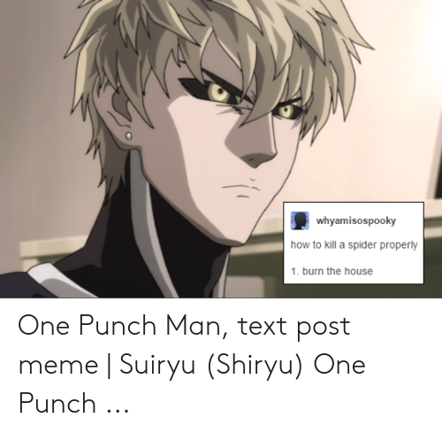 Shiryu: whyamisospooky  how to kill a spider properly  1. burn the house One Punch Man, text post meme   Suiryu (Shiryu) One Punch ...