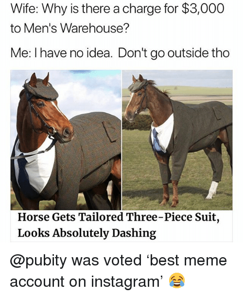 Instagram, Meme, and Memes: Wife: Why is there a charge for $3,000  to Men's Warehouse?  Me: I have no idea. Don't go outside thoo  Horse Gets Tailored Three-Piece Suit  Looks Absolutely Dashing @pubity was voted 'best meme account on instagram' 😂