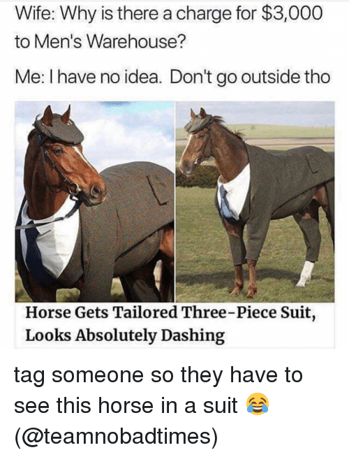 Memes, Horse, and Tag Someone: Wife: Why is there a charge for $3,000  to Men's Warehouse?  Me: I have no idea. Don't go outside tho  Horse Gets Tailored Three-Piece Suit  Looks Absolutely Dashing tag someone so they have to see this horse in a suit 😂 (@teamnobadtimes)