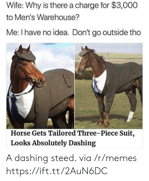 Memes, Horse, and Wife: Wife: Why is there a charge for $3,000  to Men's Warehouse?  Me: I have no idea. Don't go outside tho  Horse Gets Tailored Three-Piece Suit,  Looks Absolutely Dashing A dashing steed. via /r/memes https://ift.tt/2AuN6DC