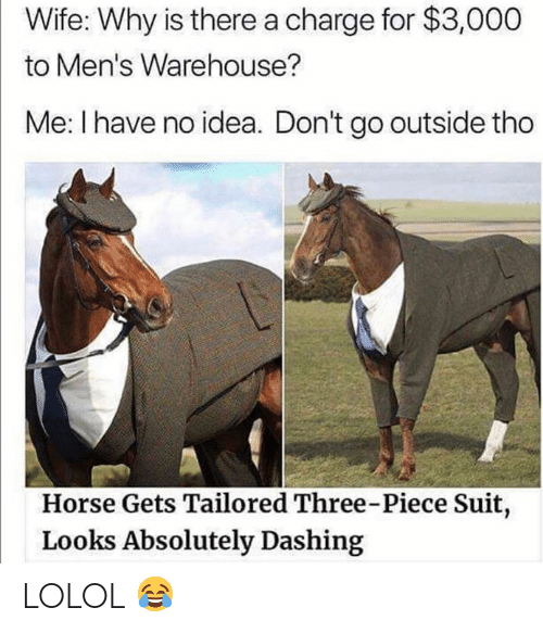 lolol: Wife: Why is there a charge for $3,000  to Men's Warehouse?  Me: I have no idea. Don't go outside tho  Horse Gets Tailored Three-Piece Suit,  Looks Absolutely Dashing LOLOL 😂