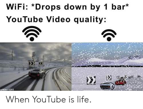 Life, youtube.com, and Video: WiFi: *Drops down by 1 bar*  YouTube Video quality: When YouTube is life.