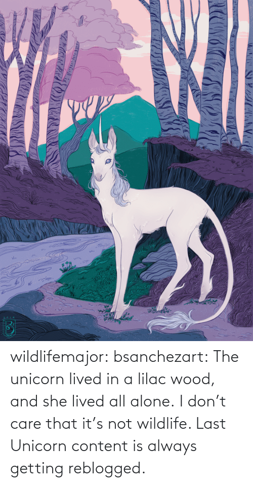 Lived: wildlifemajor:  bsanchezart:  The unicorn lived in a lilac wood, and she lived all alone.   I don't care that it's not wildlife. Last Unicorn content is always getting reblogged.
