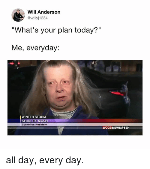 """shirley: Will Anderson  @willyj1234  """"What's your plan today?""""  Me, everyday:  WINTER STORM  SHIRLEY NASH  Cornelius Resident  WCCB NEWS@TEN all day, every day."""