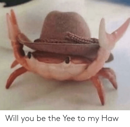yee: Will you be the Yee to my Haw