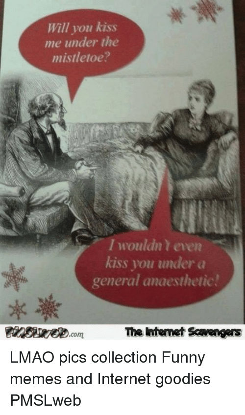 goodies: Will you kiss  me under the  mistletoe?  I wouldn t even  kiss you under a  general anaesthetic  com  The intemet Scavengers <p>LMAO pics collection  Funny memes and Internet goodies  PMSLweb </p>