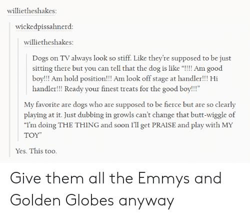 """Golden Globes: willietheshakes  wickedpissahnerd  willietheshakes  Dogs on TV always look so stiff. Like they're supposed to be just  sitting there but you can tell that the dog is like """"!!!! Am good  boy!!! Am hold position!!! Am look off stage at handler!!! Hi  handler!!! Ready your finest treats for the good boy!!!""""  My favorite are dogs who are supposed to be fierce but are so clearly  playing at it. Just dubbing in growls can't change that butt-wiggle of  """"I'm doing THE THING and soon I'll get PRAISE and play with MY  TOY""""  Yes. This too. Give them all the Emmys and Golden Globes anyway"""