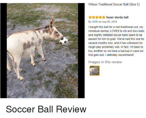 aws: Wilson Traditional Soccer Ball (Size 5)  Super sturdy ball  By AWS on Aug 05, 2016  I bought this ball for a non-traditional use: my  miniature donkey LOVES to roll and toss balls,  and slightly deflated soccer balls seem to be  easiest for him to grab. We've had this one for  several months now, and it has withstood his  rough play extremely well. In fact, I'm back to  buy another so we have a backup in case our  first gets lost. I definitely recommend!  Images in this review <p>Soccer Ball Review</p>