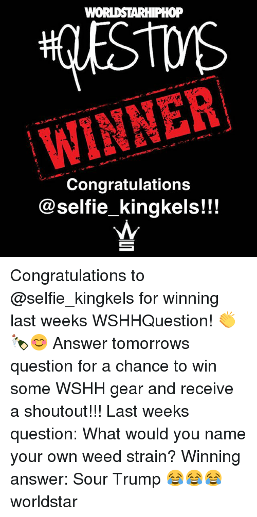 Memes, Selfie, and Weed: WINNER  Congratulations  @selfie kingkels!!! Congratulations to @selfie_kingkels for winning last weeks WSHHQuestion! 👏🍾😊 Answer tomorrows question for a chance to win some WSHH gear and receive a shoutout!!! Last weeks question: What would you name your own weed strain? Winning answer: Sour Trump 😂😂😂 worldstar