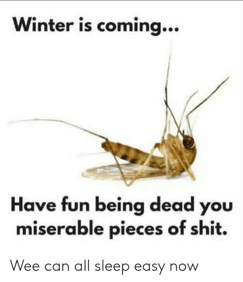 Winter Is: Winter is coming...  Have fun being dead you  miserable pieces of shit. Wee can all sleep easy now