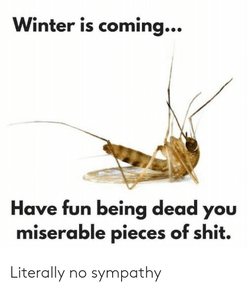 Winter Is: Winter is coming...  Have fun being dead you  miserable pieces of shit. Literally no sympathy