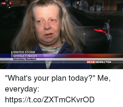 """shirley: WINTER STORM  SHIRLEY NASH  Cornelius Resident  WCCB NEWS@TEN """"What's your plan today?""""  Me, everyday: https://t.co/ZXTmCKvrOD"""